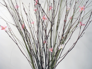 Nettleton-hollow-faux-flowering-branches