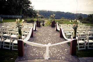 Chocolate-sage-wedding-color-scheme-ceremony-aisle-decor