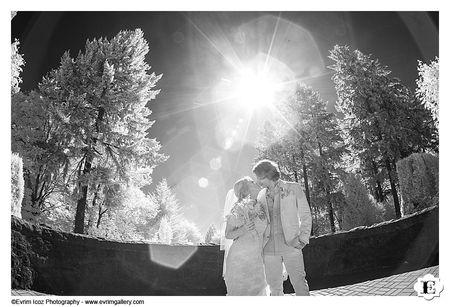 Hoyt Arboretum summer wedding in Portland, Oregon