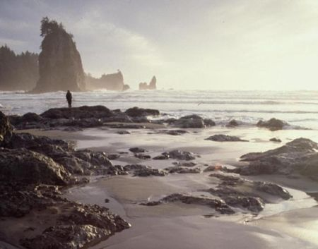 Olympic-national-park-romantic-getaways