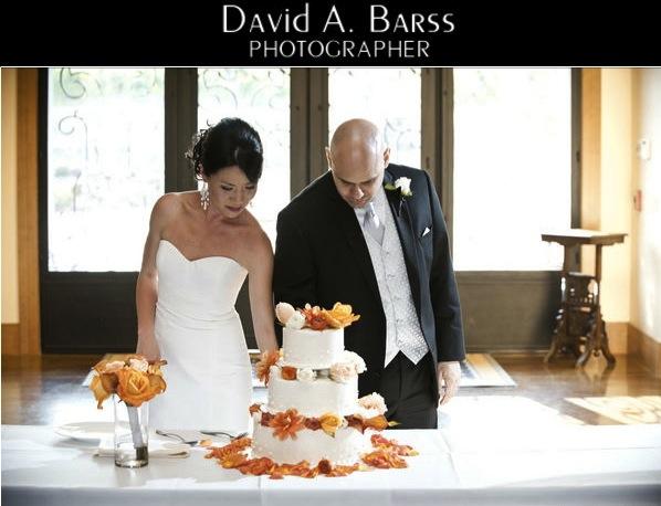 Zenith-vineyard-wedding-david-barss-photo