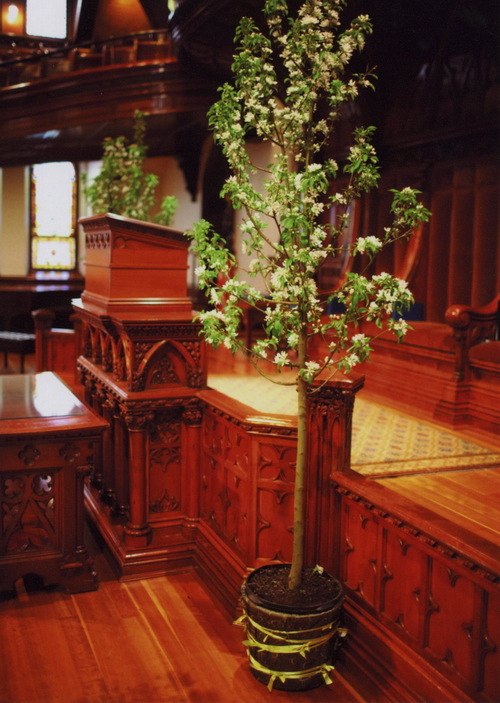 Indoor Weddings Simple Ceremony Decor