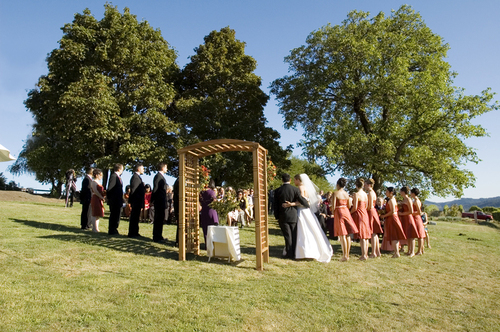 A vineyard wedding