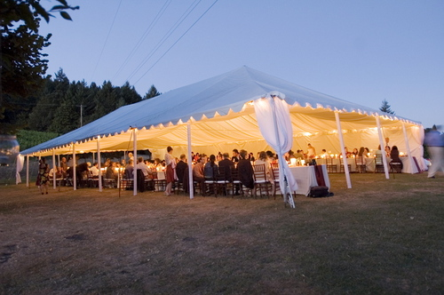 A tented vineyard wedding